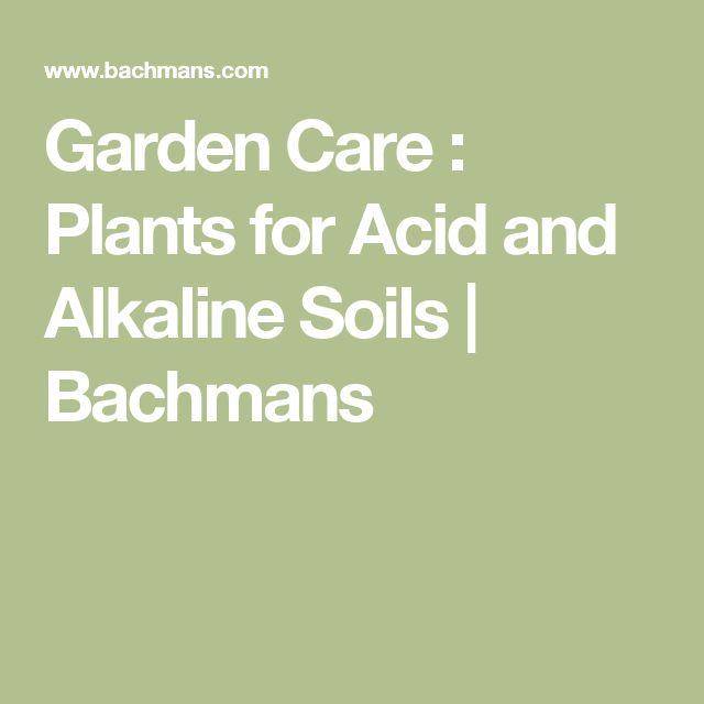 Garden Care : Plants for Acid and Alkaline Soils | Bachmans