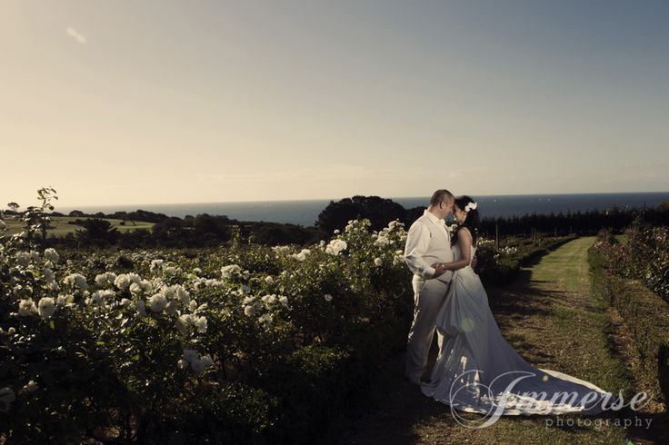Gardens and Bay Views Photography: Immerse Photography