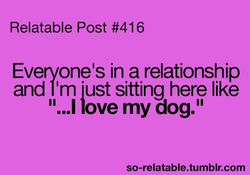 : Cat, Bahahahaha, Amenities, Basic, Awesome, My Life, Totally Me, So Sad, Best Relationship