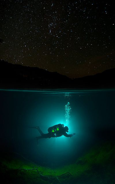Wow.  Two worlds apart: underwater, and beneath the starlit night