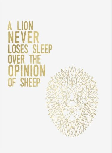 A lion never loses sleep over the opinion of sheep.