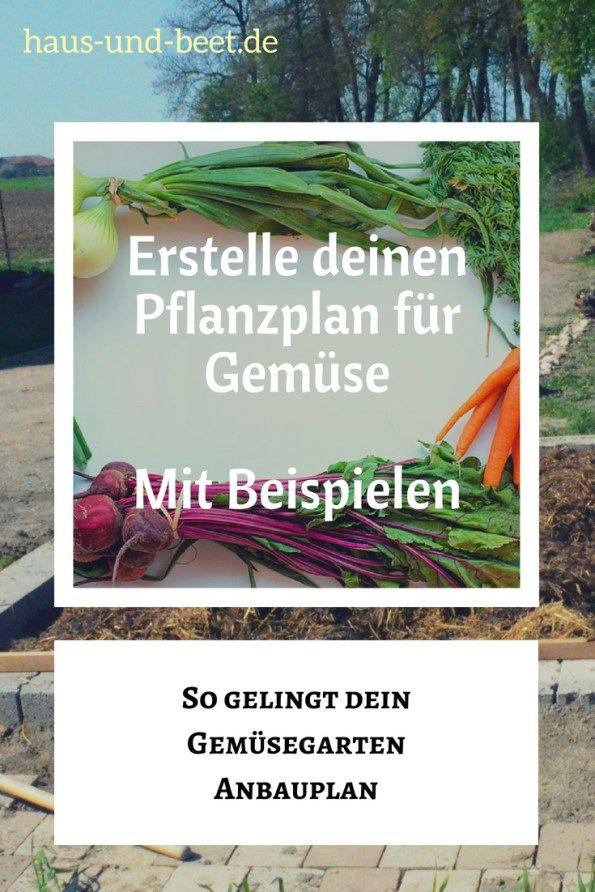 Erstelle deinen Pflanzplan für Gemüse – Mit Beispielen   Biogemüse ...