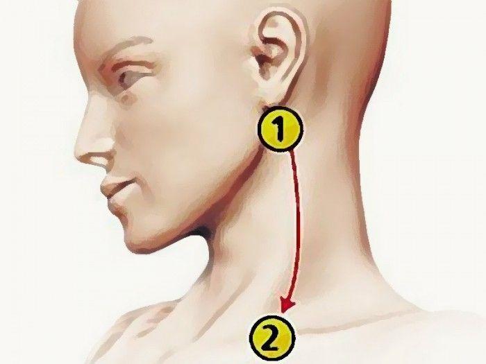 Артериальная гипертония – одно из наиболее часто диагностируемых заболеваний сердечно-сосудистой системы. Данная патология характеризуется хронически высокими показателями артериального давления. Как…