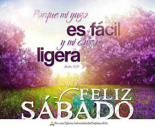 Imagenes Y Frases De Felicidad: Good Morning And