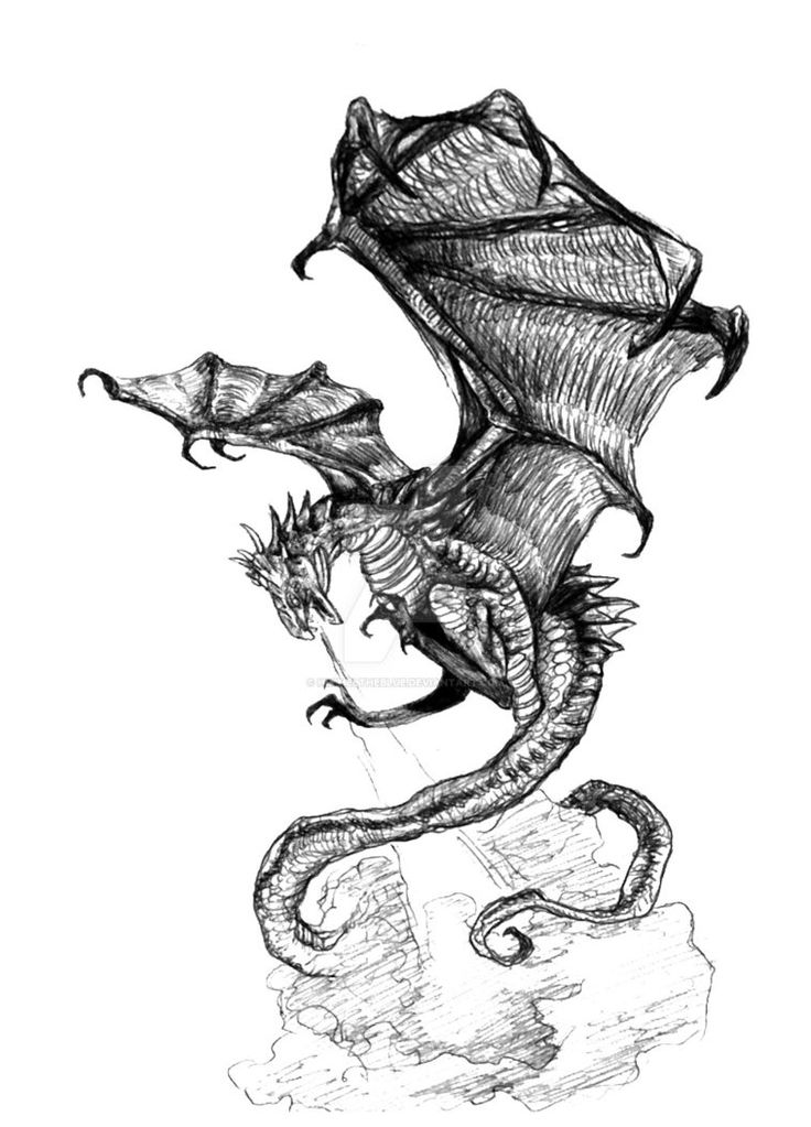 dragon tattoo design by himmeltheblue on deviantart dragons in black and white mostly. Black Bedroom Furniture Sets. Home Design Ideas