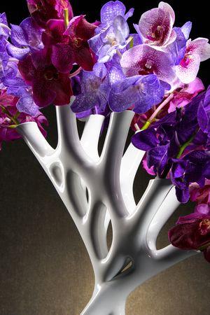 Aprilli Coral Vase