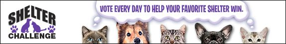 The $100,000 Shelter Challenge Is Back: VOTE NOW!  If you don't have a shelter please vote for The Humane Society of South Coastal Georgia, Brunswick Georgia. They are a no kill shelter and programs for affordable pet care. Thank you very much.