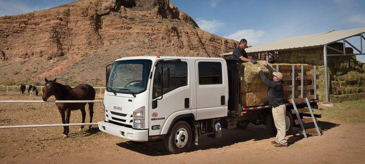 Isuzu Commercial Vehicles - Low Cab Forward Trucks - Commercial Trucks - Diesel Photo Gallery