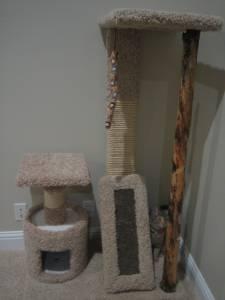 Cat Tree On Craigslist Grants Pass Ladder Decor Kittens And Puppies Decor