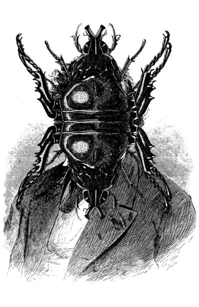 In what ways is Gregor's metamorphosis symbolic in Kafka's The Metamorphosis?
