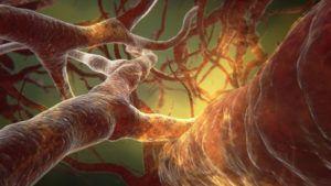 Podwyższony poziom amoniaku wekrwi - HIPERAMONEMIA