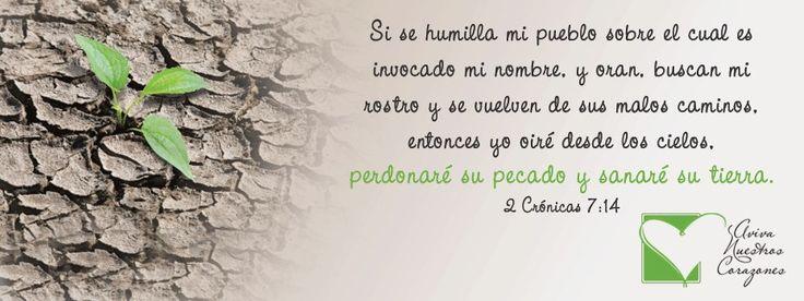 2 CRÓNICAS 7:14 #DiosEstáEnSuTrono