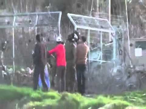 Video Israeli soldiers attack Palestinian teen with dog