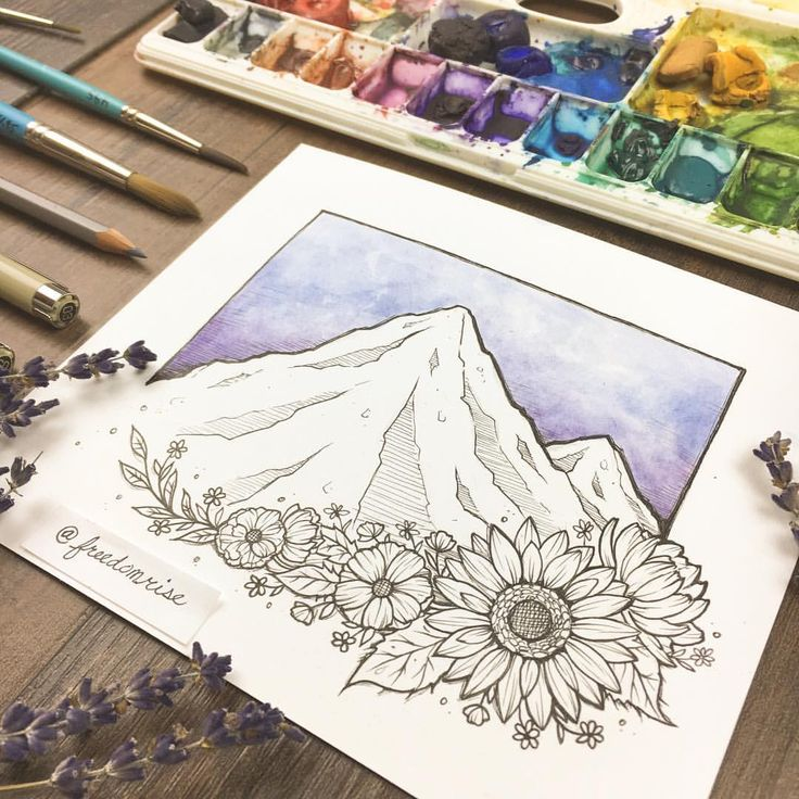 """434 Likes, 6 Comments - Freedom Rise   Becca Stevens (@freedomrise) on Instagram: """"Mountains + Wildflowers = a few of my favorite things ⛰✨"""""""