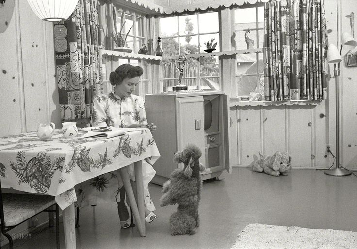 "Los Angeles circa 1952. ""Actress Betty White at home with her dog."" Note what looks like an Emmy Award atop the television set. Photos by Maurice Terrell and Earl Theisen for Look magazine."