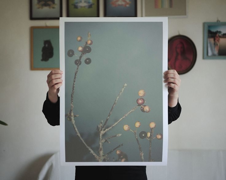 Altered Flora III, 42 X 59,4 cm (A2), Limited to 30 editions. Find it here: http://shop.palegrain.com/product/altered-flora-iii-large #limitededition #print #artwork #poster #wallpiece #interior #interiör #göteborg #sweden