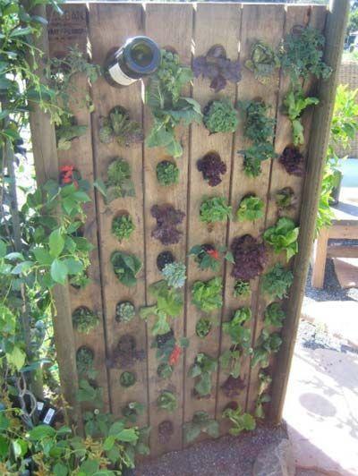 328 Best Landscaping Ideas Images On Pinterest Garden Ideas Yard
