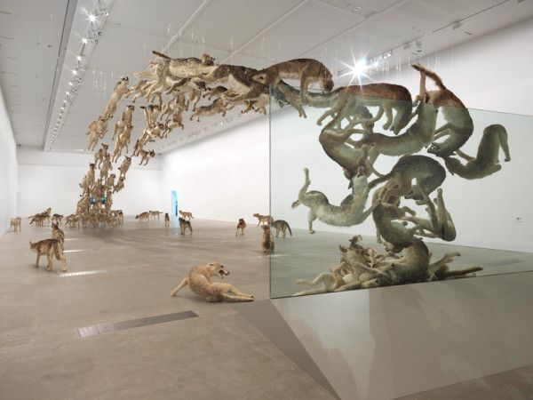 Cai Guo-Qiang 'Falling Back to Earth' - Queensland Gallery of Modern Art (GOMA), Australia