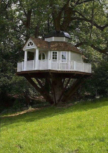 Awesome Tree House !!