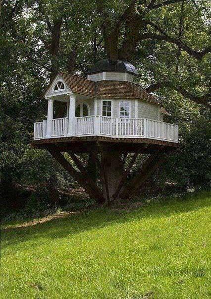 Awesome Tree House !!