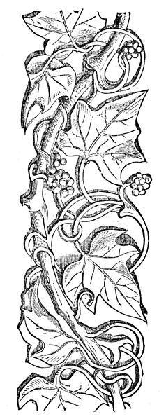 Leather Pattern Wine Carrier Wood Carving Floral Patterns Adult Coloring Motifs Mandala Molde Design
