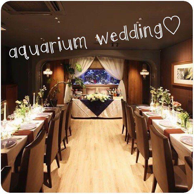 """【lime_shinsaibashi】さんのInstagramをピンしています。 《""""aquarium wedding♡"""" ・ ・ ・ こんにちは♪  当店心斎橋ライムでは貸切フロアにてウエディングパーティの1.5次会、2次会のご予約も承っております。  お気軽に1度お問い合わせください◡̈ また、提携先のドレスショップでご予約頂くとお着付けをスタッフが無料でお手伝いします♪ ドレスの運搬も不要で楽ちん!です! 50名様以上のご予約にてドレスパックプランもご用意しております♪  お問い合わせお待ちしております✩*⋆ #心斎橋lime#aquarium#アクアリウム#dining#ダイニング#restaurant#レストラン#水槽#熱帯魚#resort#貸切#ウエディング#wedding#party#1.5次会#2次会#ドレス#dress#blancchouette#follow#instagood#l4l#f4l》"""