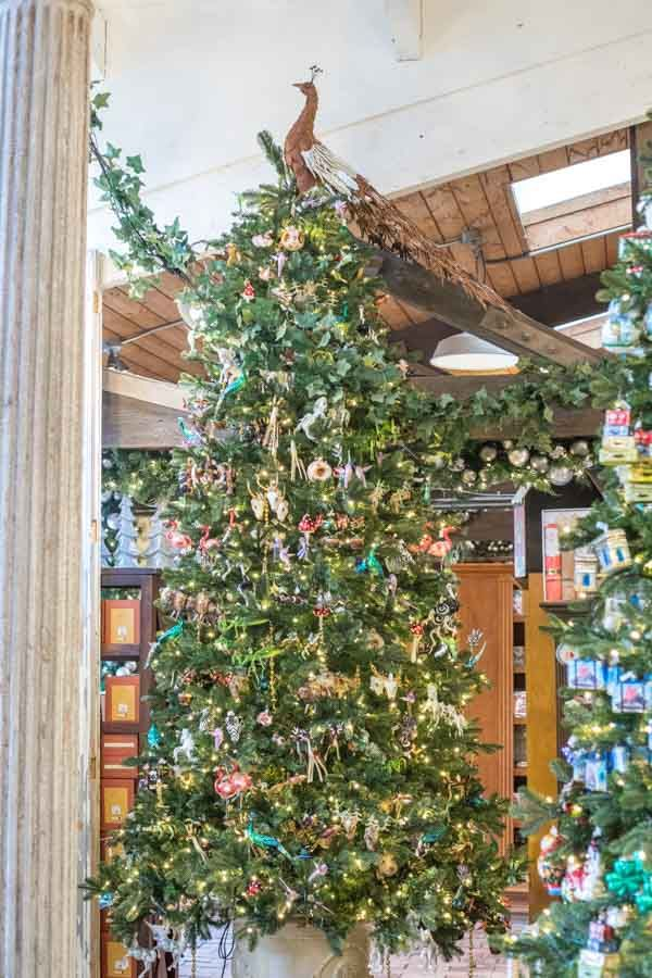 7915b81940950c43eb546a9db417c426 - When Does Rogers Gardens Decorated For Christmas
