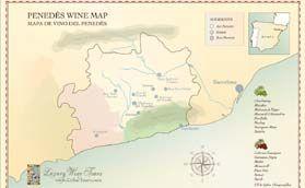 Wine Region, Penedes - Spain