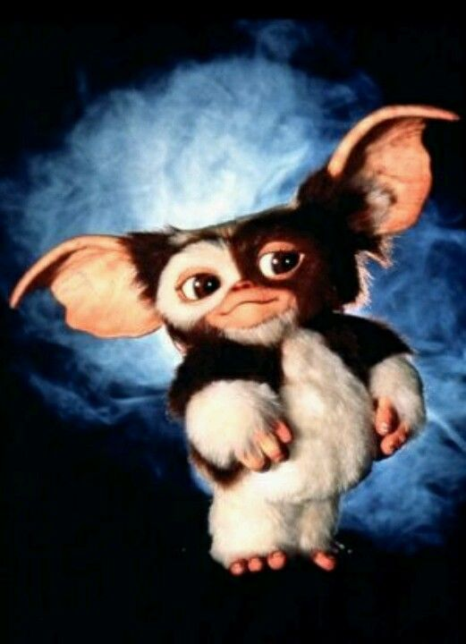 I wanted this Gremlin!!! Okay, still do!