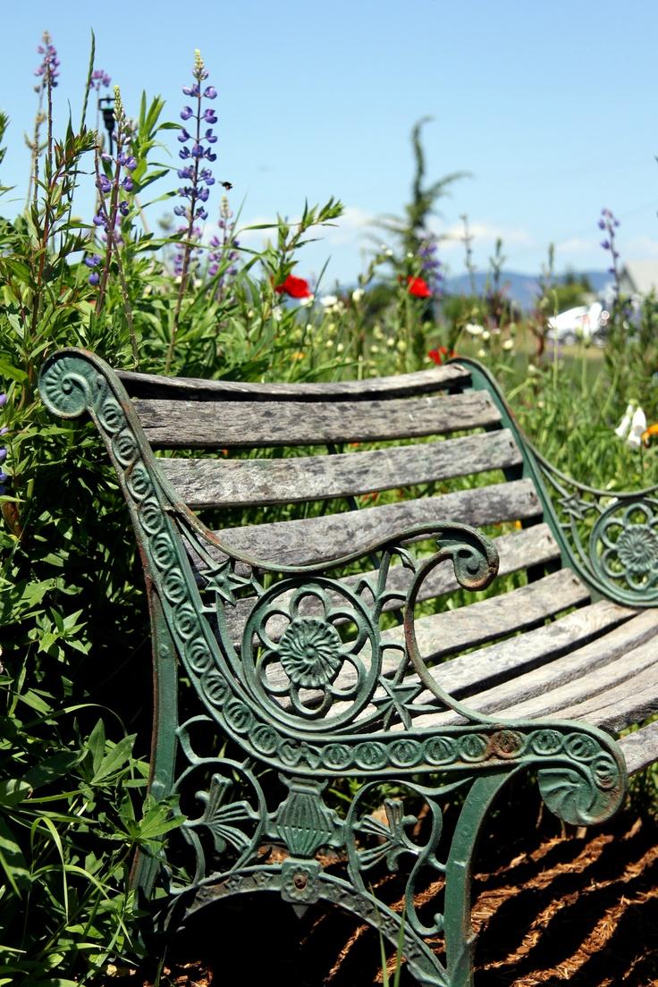 Garden Bench - to go right in front of the rain gutter garden. :)