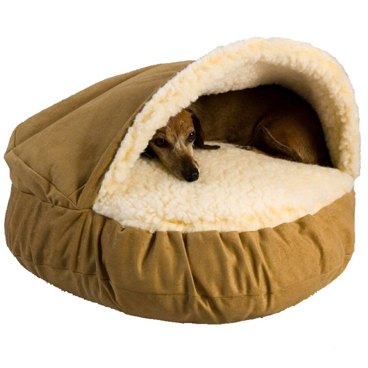 bed at pet restateco on with decor to outdoor encourage regard household amazon new dog beds residence regarding photos plan