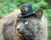 Cat Hat Steampunk Inspired - Voyager Through Time