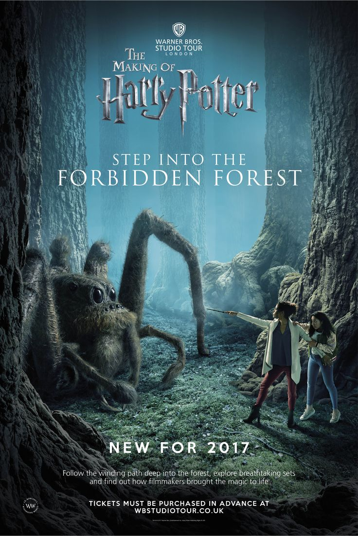 The Forbidden Forest may be strictly off-limits to Hogwarts students, but for the first time this March, you are invited to defy Professor Dumbledore's orders and follow the footsteps of Harry, Ron and Hermione deep into the grounds of the Forbidden Forest.
