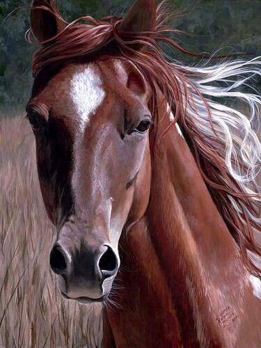 Horse Canvas Oil Painting #dreamkidsbedroom @cuckoolandcom