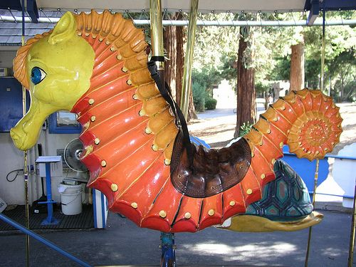 King Neptunes Yellow Sea Horse Carousel Ride from Happy Hallow by kingneptunescarousel, via Flickr