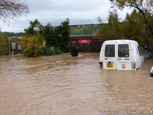 La Réserve Africaine de Sigean de nouveau inondé !