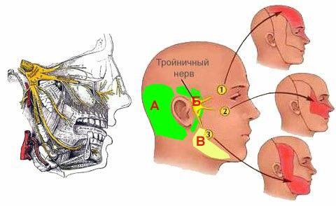 К статье про психосоматические причины зубной боли...