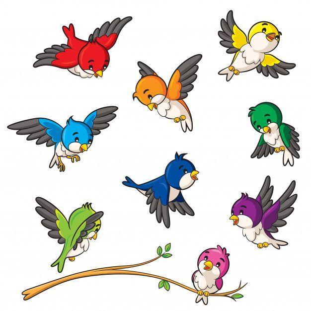 Birds cartoon Premium Vector | Premium Vector #Freepik #vector #winter #cartoon ... - - #Birds #Cartoon #F… in 2020 | Cartoon bird drawing, Cartoon birds, Cartoon clip art