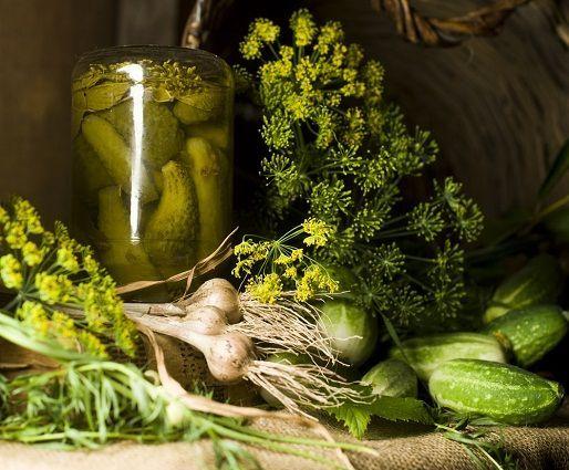 Így készül a tökéletes kovászos uborka - Hir24