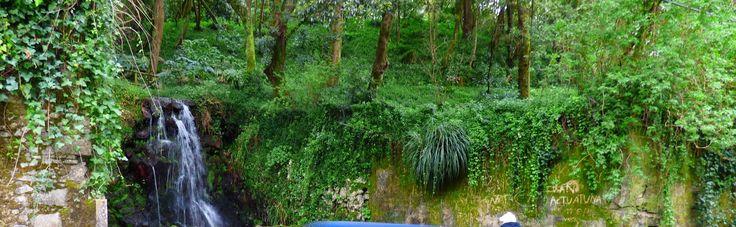 Sintra - take a walk on the wild side: De novo 5ª feira 05 de Março, 10h00: PASSEIO 'PELO...