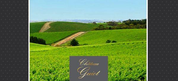 François et Sylvia Cornut jettent leur dévolu sur le Château Guiot en 1976 et l'achète cette même année pour y exprimer savoir-faire et passion. Très vite la famille Cornut y change l'encépagement pour planter de nobles cépages propices à l'élaboration de grands vins. Chateau Guiot