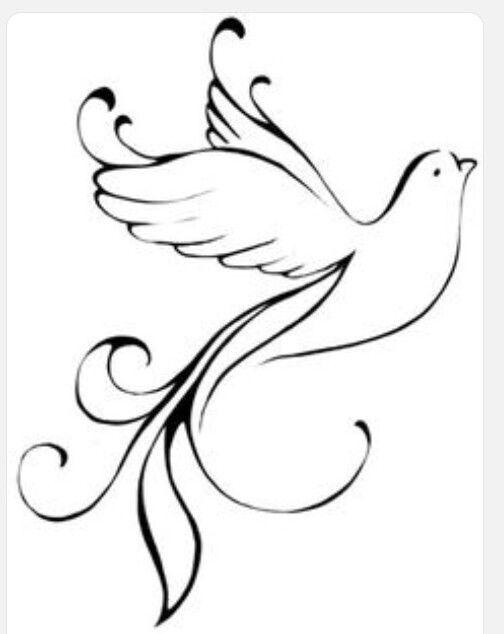The 25 best Peace dove ideas on Pinterest  Peace bird Picasso