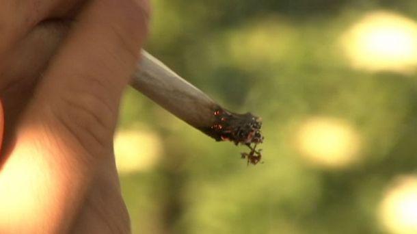Crece el consumo de cannabis, el resto de drogas ilegales se estancan | EiTB Radio Vitoria
