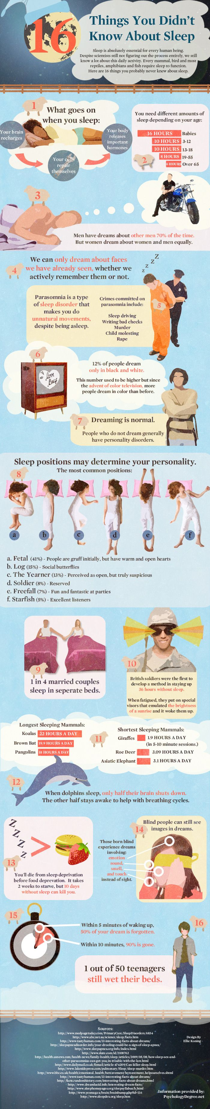 16 Facts About Sleep: Fit, Ideas, Life, Fun Facts, Sleep Facts, 16 Things, 16 Facts, Random Facts, Sleep Infographic