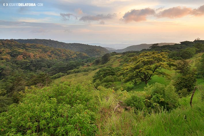 Sunset in Monteverde Costa Rica #josafatdelatoba #cabophotographer #travels #Costarica #landscapephotography #Monteverde #santaelena