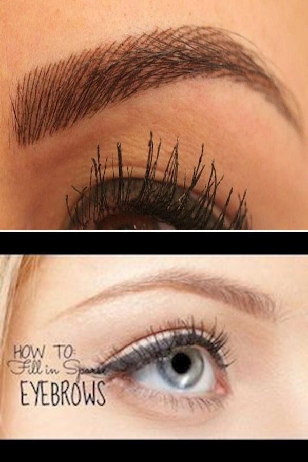 Thick Eyebrow Shapes   Eyebrow Makeup Application   How To ...