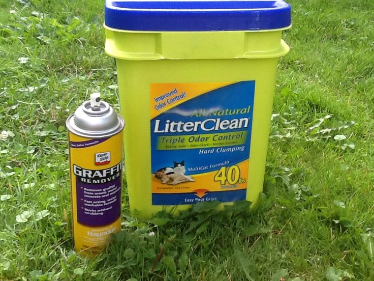 Remove Oil With Cat Litter