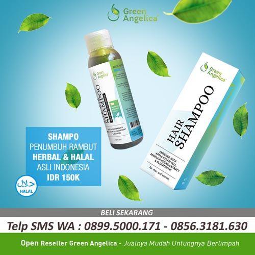 Green angelica perawatan rambut rontok ini dikenal sebagai product untuk…