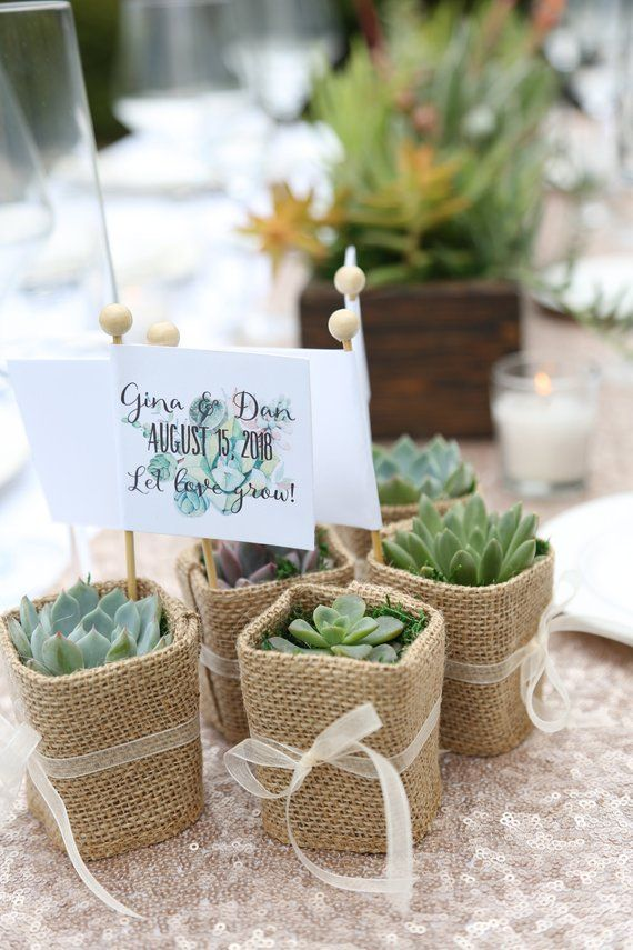 50 Wedding Favors Succulent Wedding Favors With Customized Etsy In 2020 Succulent Wedding Favors Wedding Favors Wedding Gift Messages