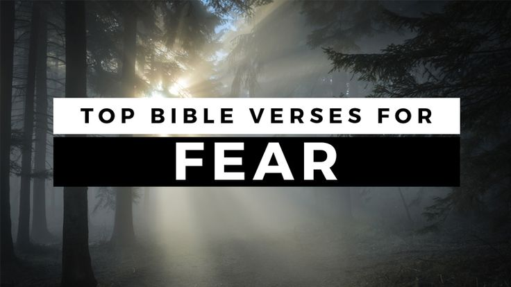 We have all faced a situation where we had to make a choice to fight or to run. What is your response to fear? Check out these Bible verses about fear.